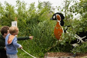 slimbridge-wetland-centre-cotswolds-concierge (12)